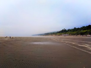 Fog rising on beach at Kalaloch campground Olympic National Park 3