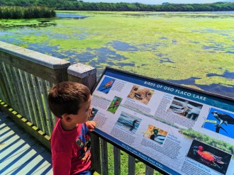 Taylor Family at Beach at Oso Flaco Lake Nature Preserve Nipomo 7