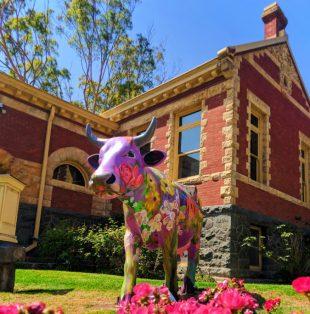 Painted cow public art at Historical Museum San Luis Obispo 1