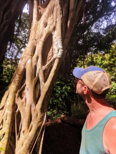 Taylor Family with Tropical jungle vines at Waimea Valley North Shore Oahu 1