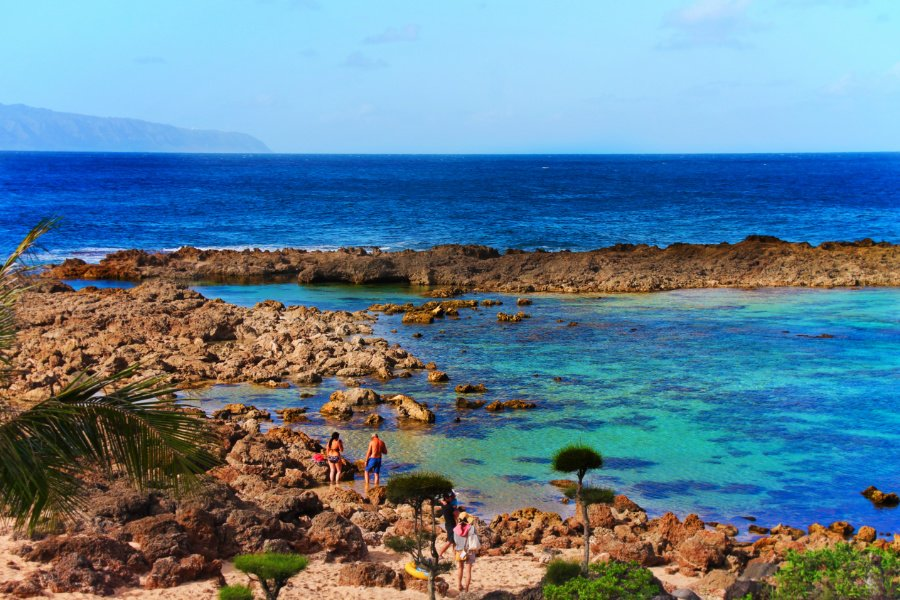 Colorful waters at Sharks Cove Oahu North Shore 4