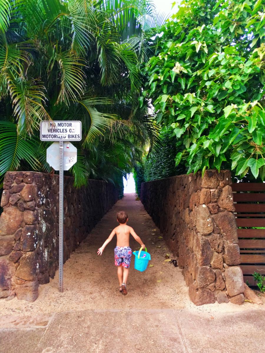 Neighborhood access to Sunset Beach Haleiwa Oahu 1