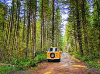 Vintage VW Bus at Falls Creek Falls Carson Washington 1b
