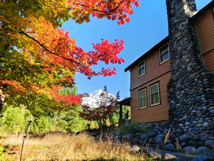Fall Colors National Park Inn Longmire Mount Rainier National Park 4