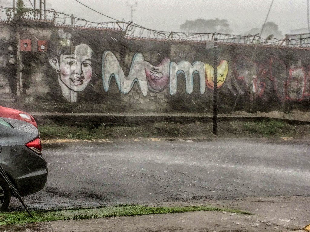 Street Art and a Downpour