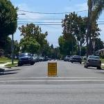 Inglewood's Parking and Traffic Commission had no input on citywide parking permit program