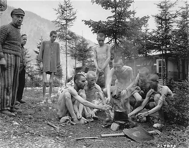 Картинки с лагеря войны