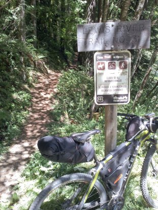 Starting on the Lewis river trail.