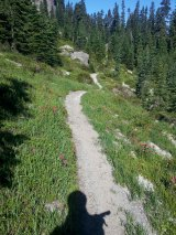 The garden-like Boundary trail past Kirk Rock.