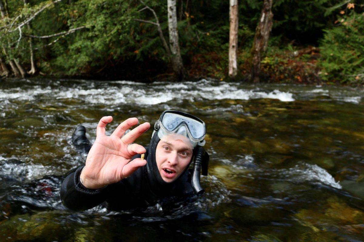 Sooke's Paul Larouche gold snipes along Sooke River, a process in which he uses a mask and snorkel to find pieces of gold. (Aaron Guillen/News Staff)