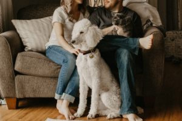 Pet Friendly Rental Advice for Landlords