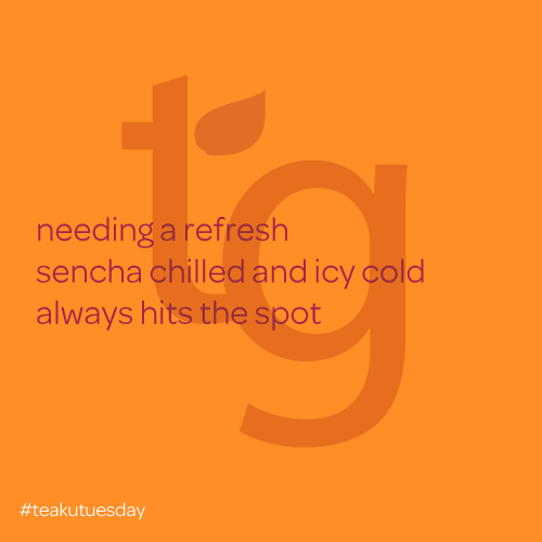 needing a refresh / sencha chilled and icy cold / a;ways hits the spot