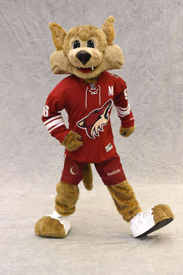 Image result for az coyotes mascot