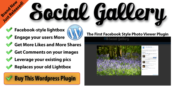 Social Gallery WordPress Photo Viewer Plugin