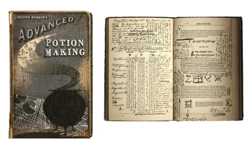 photo relating to Harry Potter Potions Book Printable named Harry Potter Marginalia The E-book And Biscuit