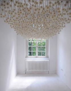 orientaltiger:</p><br /> <p>2,000 Suspended Dandelions by Regine Ramseier<br /><br />