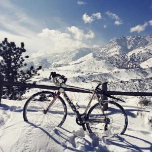 dino snowy bike
