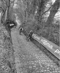 The Koppenberg, which the peloton will grind over on Sunday