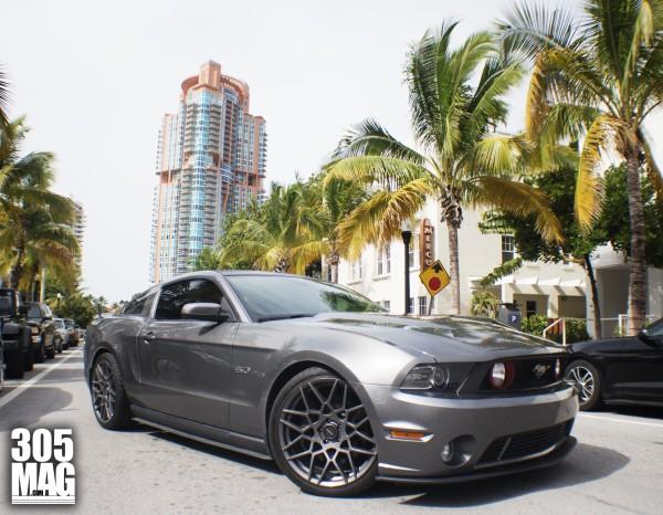 Miami Beach Mustang