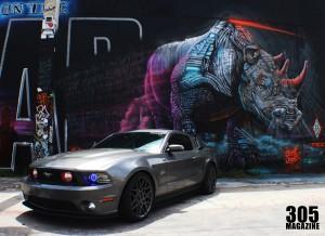 Mustang.Wynwood4