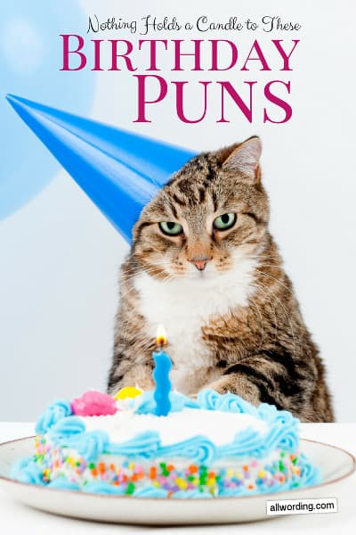 Happy Birthday To The Coolest Cat In Town Greetings Card Aid