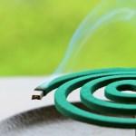 網戸の虫対策の虫除けの効果と部屋の中から対策する時のおすすめ