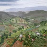 1804 Coffee Haiti and the Hurricane