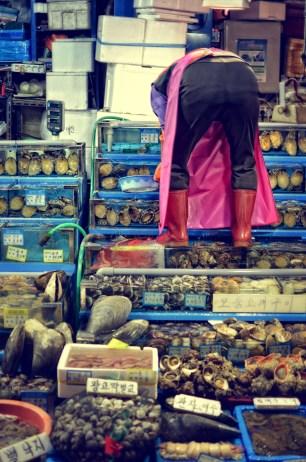noryangjin_fish_market4