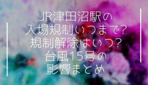 JR津田沼駅の入場規制いつまで?規制解除はいつ?台風15号の影響まとめ