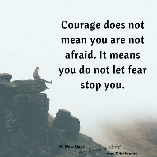 Courage does not mean you are not afraid. It means you do not let fear stop you.