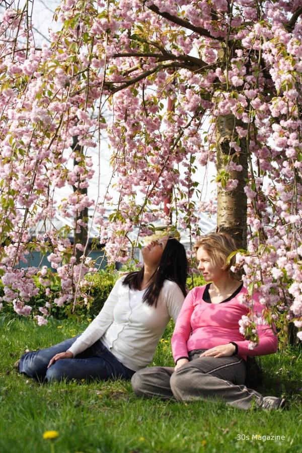 blossomtour9