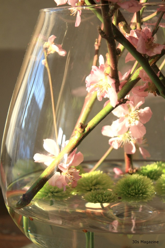 Life's Little Luxury: Blossom Branches at Home