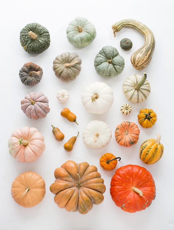 heirloom-pumpkins-fall-decor-1