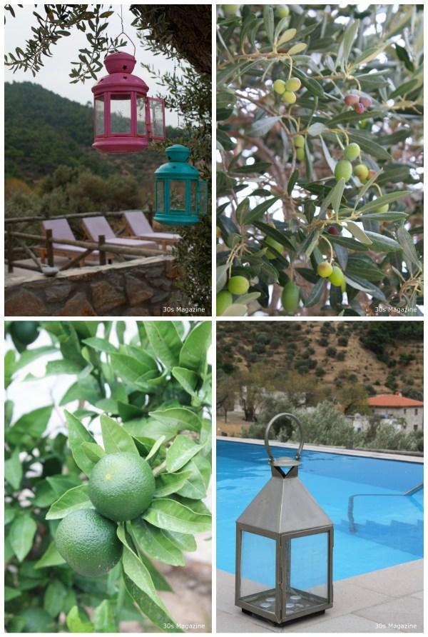 villa olivio