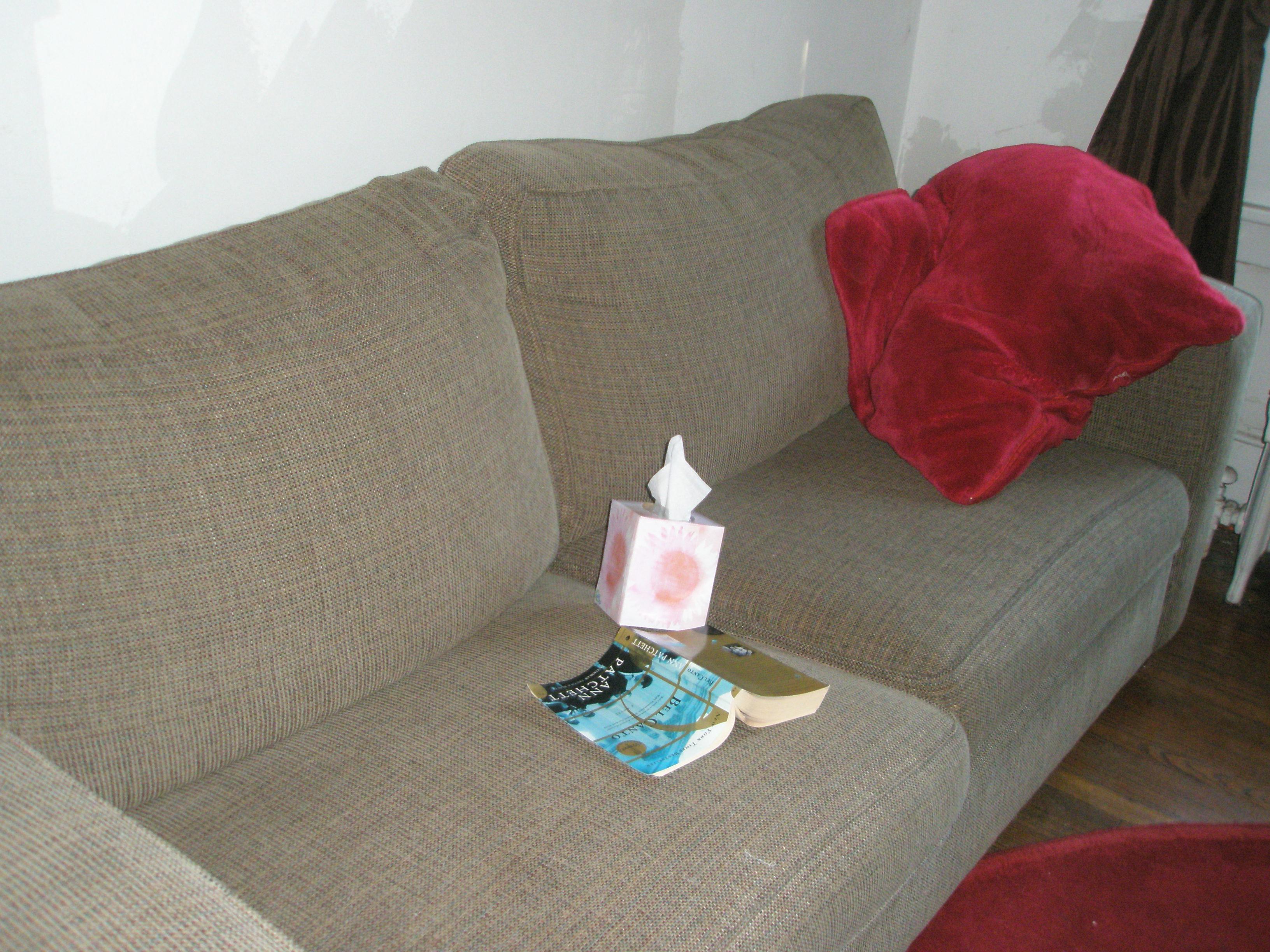 Kleenex, literature, or the pillow?