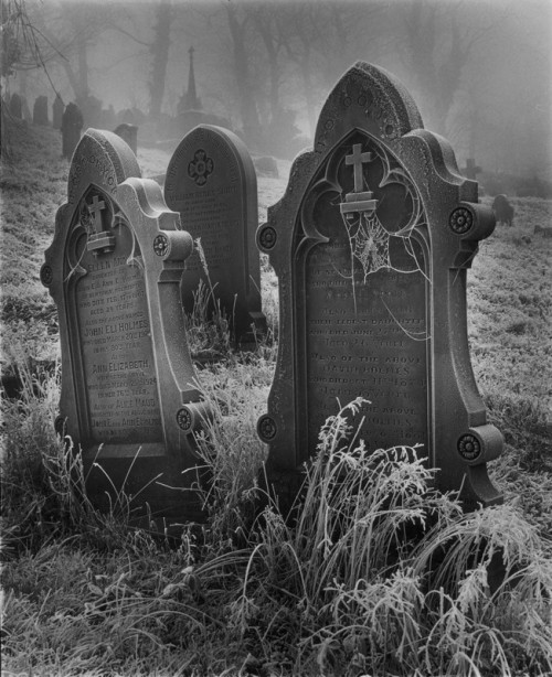 blackoutraven:</p> <p>www.amateurphotographer.co.uk</p> <p>The graves are shaking.<br /> The earth is rumbling.<br /> Soon the earth will open<br /> and THE DEAD will step out.<br /> THE DEAD love their games.<br /> THE DEAD GAME by Susanne Leist