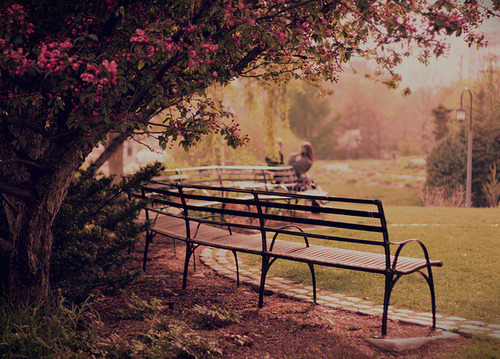 What can be better than sitting on a bench<br /> in the warm weather, watching people, and<br /> daydreaming?<br /> Nothing,<br /> unless you live those dreams.