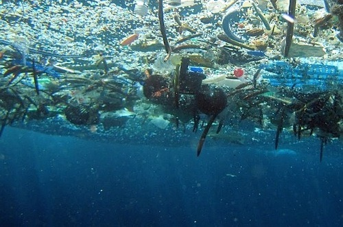 Image result for pictures of ocean garbage patch