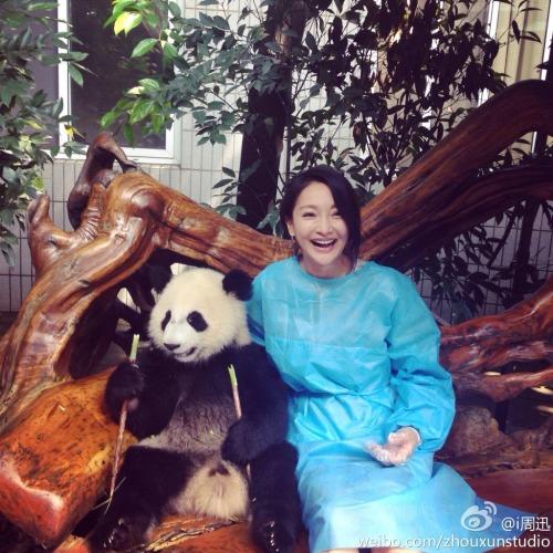 Zhou Xun with panda (minus boyfriend Archie Kao)