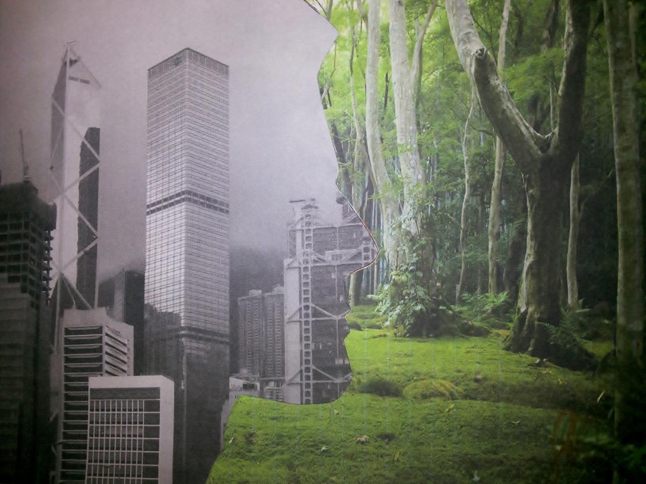 Y este es mi ultimo collage sobre rostro-paisaje. En este quise expresar algo similar a lo que exprese en el collage de paisaje. Este collage representa como el hombre últimamente solo piensa en ciudades, en construir, sin importarle la naturaleza. Cuando ve un paisaje hermoso en vez de pensarlo como un lugar de descanso, lo ve como un terreno para contruir, en vez de arboles, ve edificios, en vez de nubes ve smog.