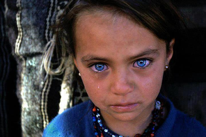 dimens1ons:</p> <p>Syrian refugee<br />
