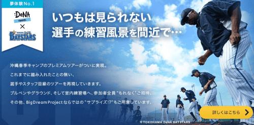 横浜DeNAベイスターズ 春季キャンプツアー2014