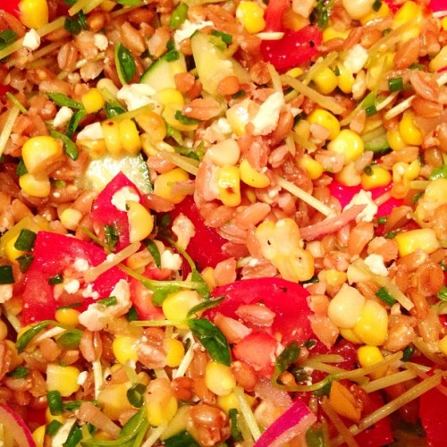 Vegetarian Farro Salad