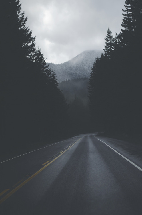 brutalgeneration:</p> <p>Gone (by Ky Bouge)</p> <p>The road not taken<br /> is a whole life lost.