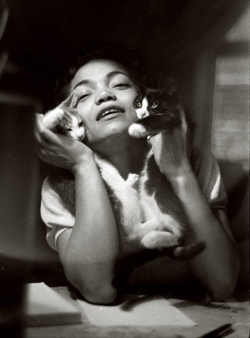 Eartha Kitt and some kittens, photo by Cornell Capa