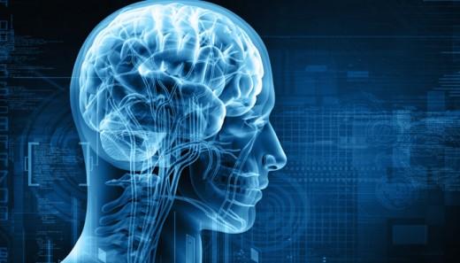 beynin-cinsiyeti