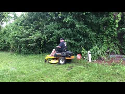 Brn Lawndogging