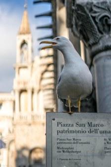 Venedig-15