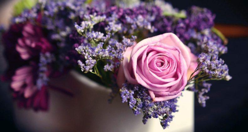 jak przzedłużyć świeżość ciętych kwiatów