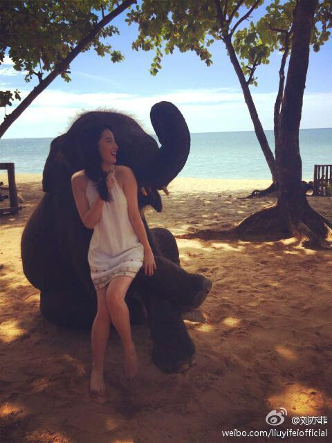 Crystal Liu Yifei with baby elephant